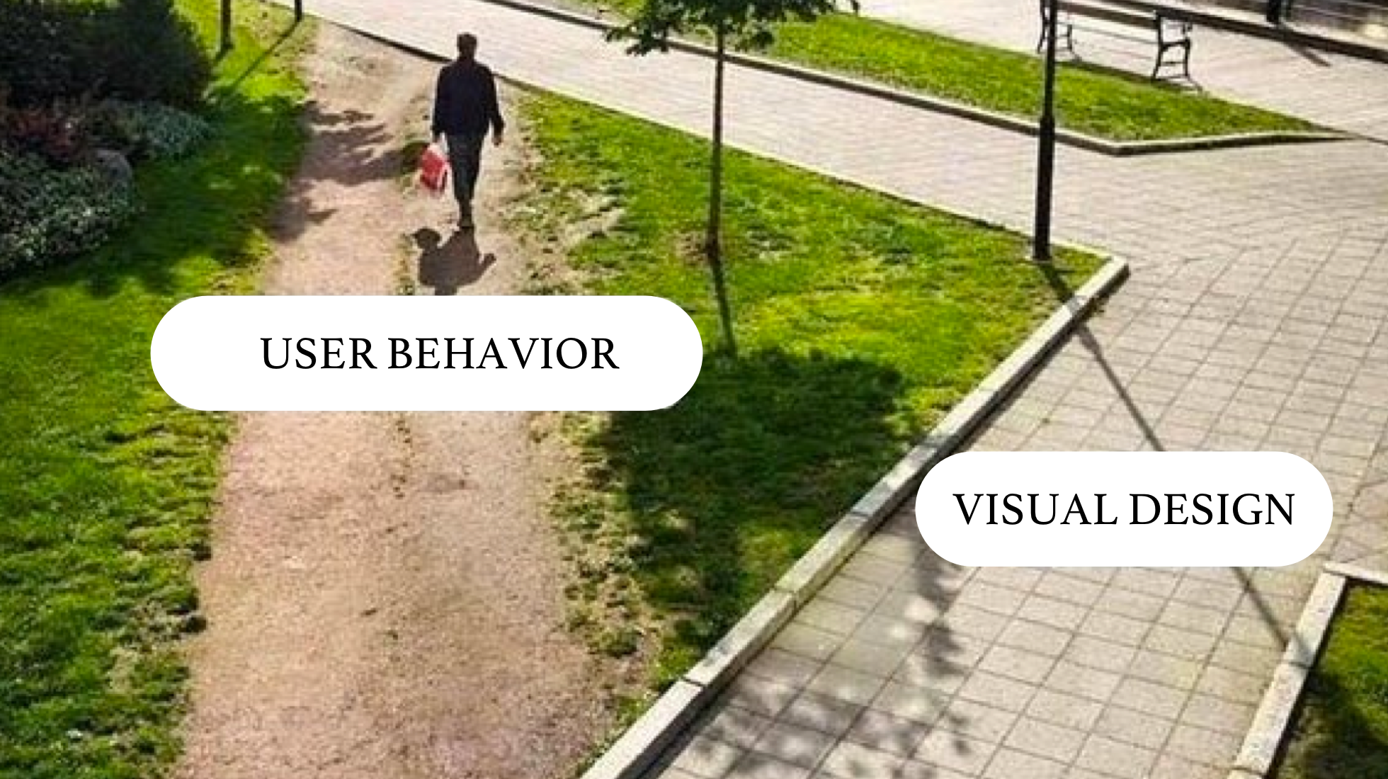 visual design vs user behavior