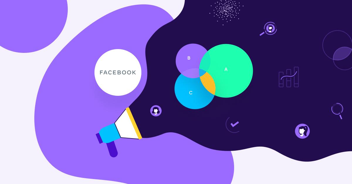 facebook audience roas measurement  - og
