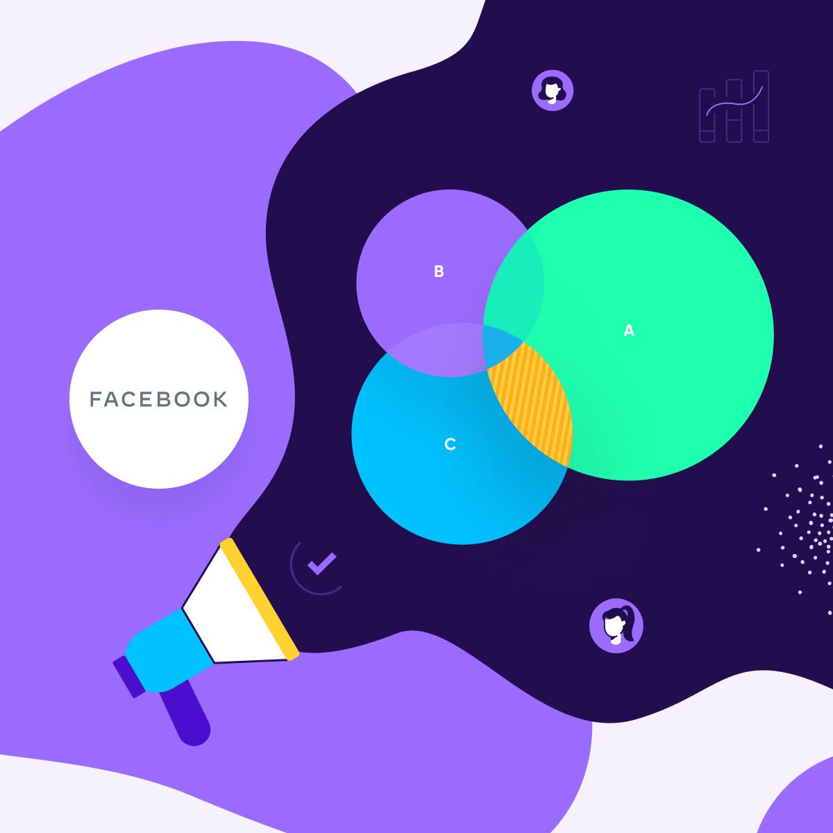 facebook audience roas measurement